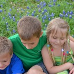 The Annual Bluebonnet Tradition